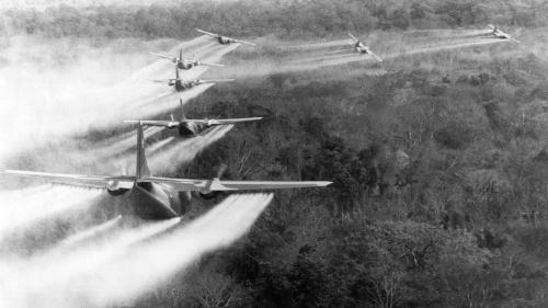 """Tran To Nga porte le procès de """"l'agent orange"""" de la guerre du Vietnam devant un tribunal français : """"Elle est seule contre les industriels de l'agrochimie"""""""