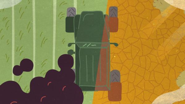 Changement climatique : à la fois bourreau, victime et sauveur, le secteur agricole à la croisée des chemins