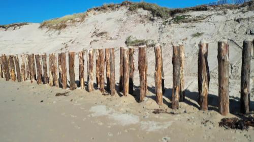 Pour lutter contre les assauts de la mer et le recul du trait de côte, la commune d'Agon-Coutainville dans la Macnhe a planté 200 poteaux de 5 mètres dans le sable. Une installation qui devrait permettre de protéger la dune et les habitations. #IlsOntLaSolution