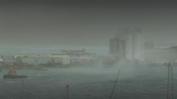 Nouvelle-Calédonie : le cyclone Niran prive 39 000 foyers d'électricité