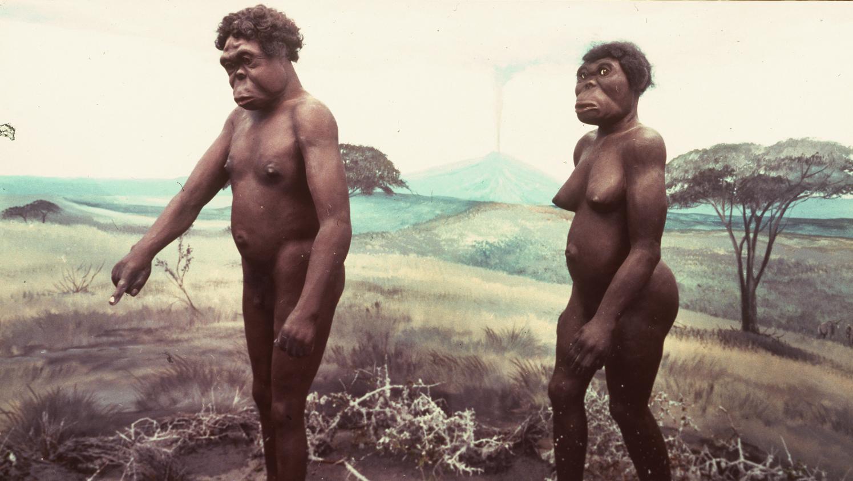 La femme préhistorique reprend sa place