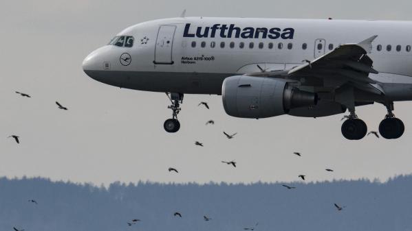 Aviation : le trafic de passagers mondial reprend des couleurs en mars grâce aux vols intérieurs