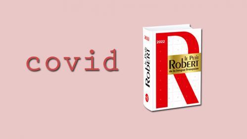 """Image de couverture - """"Covid"""" au masculin et sans majuscules dans Le Petit Robert 2022"""