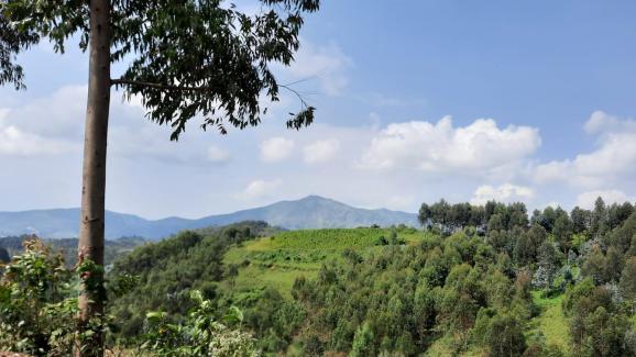 Les collines de Bisesero, dans l'ouest du Rwanda, le 26 mai 2021