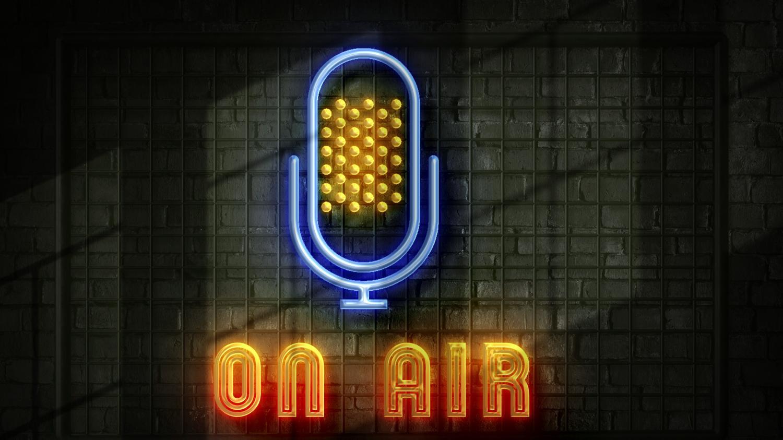 Le rendez-vous de la médiatrice. Le temps de parole des formations politiques sur les antennes de Radio France