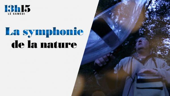 Ecouter la nature… le chant des oiseaux, le son de la pluie, le murmure des insectes… C'est ce que fait Fernand Deroussen, l'un des quatre audio-naturalistes de France. Portrait.