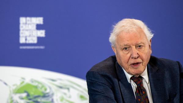 """Le naturaliste David Attenborough, 95ans, exhorte le G7 à agir sur le climat: """"Tout ce qui manque, c'est la volonté"""""""