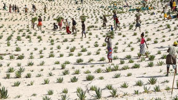 Το Πρόγραμμα Ανάπτυξης των Ηνωμένων Εθνών (UNDP) σχεδιάζει να βοηθήσει τους ανθρώπους να προσαρμοστούν στην αλλαγή του κλίματος, να φέρουν καθαρή ενέργεια στις αγροτικές περιοχές, να προετοιμαστούν για φυσικές καταστροφές και να διατηρήσουν τη βιοποικιλότητα.  & Nbsp;