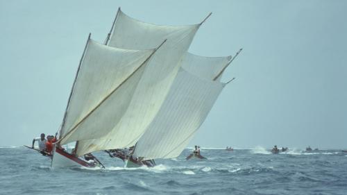 Image de couverture - Le journal des Outre-mers. En Martinique, la fameuse course des yoles aura bien lieu cet été, fin juillet