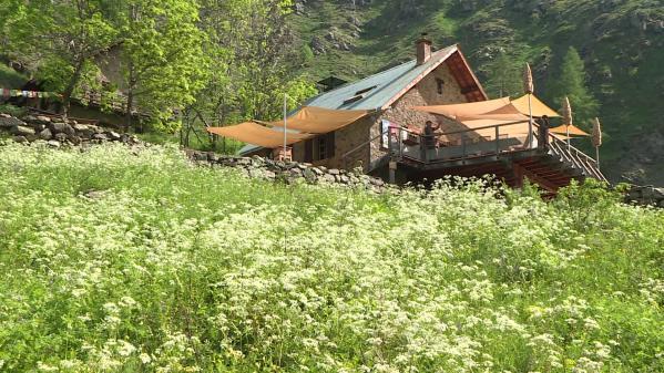 On n'entendra plus le bruit du groupe électrogène du refuge du Tourond dans les Hautes-Alpes, perché à 1700 mètres d'altitude. Son gardien a investi vingt mille euros dans des panneaux photovoltaïques lui assurant l'autonomie énergétique durant les cinq mois de saison. #IlsOntLaSolution