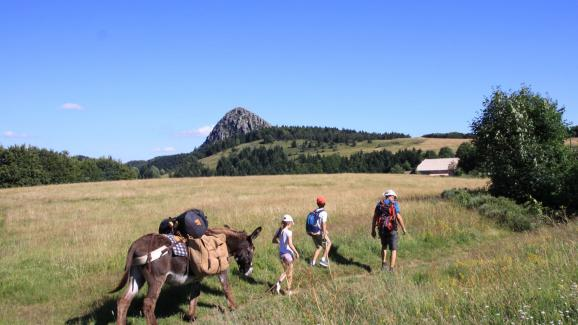 In Ardèche, the guide Olivier Mathis takes families on a hike-bivouac with donkeys.