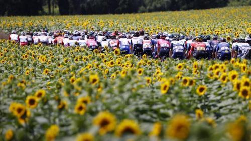 Image de couverture - Tour de France 2021 : bulle sanitaire, folie du public... Trois semaines au coeur d'une Grande Boucle haute en couleur