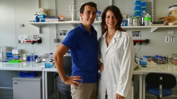 Avec son mari également biologiste, Rose-Marie Vesin-Auclair a créé sa société Woodlight pour créer des plantes bioluminescentes.