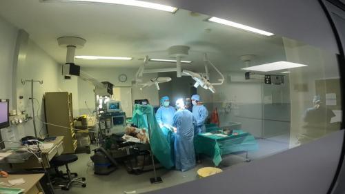À la clinique de l'Union à Saint-Jean près de Toulouse, une nouveauté a fait son apparitionlorsdes opérations des genoux. Leschirurgiens opèrentavec de curieuses lunettes de réalité augmentée. Grâce à elles, ils disposent d'informations précises en temps réel. #IlsOntLaSolution