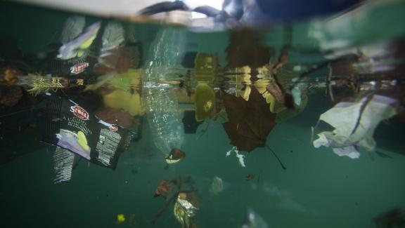 El robot Jellyfishbot, gracias a su red con una capacidad de 80 litros, trabaja para limpiar los puertos, pero también los océanos.  & Nbsp;