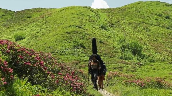 Montagne : des musiciens-randonneurs font la tournée des refuges