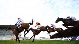 Image de couverture - Griezmann, Parker, Lavillenie : la passion galopante des sportifs pour les chevaux de course