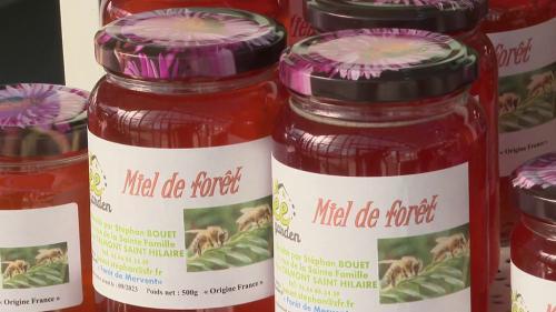 Y aura-t-il du miel français dans nos magasins dans les mois qui viennent ? La question est posée, car la récolte est catastrophique cette année, il y a eu 2 fois moins de miel produit qu'en 2020 en raison du gel au printemps, et de la météo maussade une bonne partie de l'été.