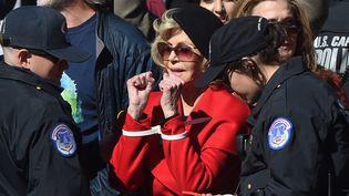 L'actrice et activiste Jane Fonda arrêtée devant le Capitole, à Washington (Etats-Unis), lors d'une manifestation contre le réchauffement climatiques, le 18 octobre 2019. (OLIVIER DOULIERY / AFP)