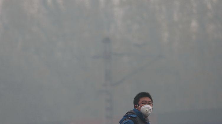 Un Chinois porte un masque contre la pollution de l'air dans la ville de Shenyang (Chine), le 8 novembre 2015. (CHA JINHUI / IMAGINECHINA / AFP)