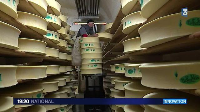 Quand le fromage crée de l'énergie renouvelable