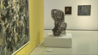 42 femmes artistes des années 50 exposées au musée Soulages à Rodez, dans l'Aveyron. (France Télévisions /  L. Tazelmati)