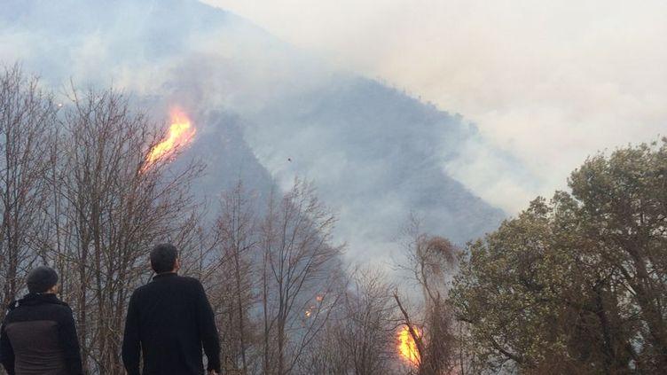 Les incendies en Haute-Corse ont parcouru au moins 1 500 hectares. (MAXIME BECMEUR / FRANCE BLEU RCFM)