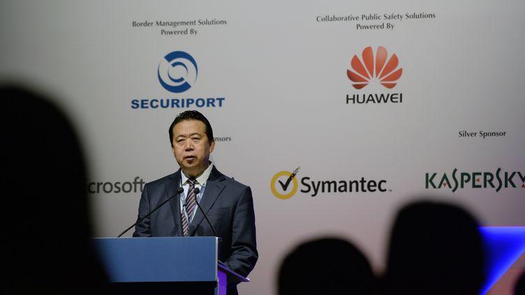 Le président d'Interpol, Meng Hongwei, le 4 juillet 2017, lors du congrès de l'organisation, à Singapour. (ROSLAN RAHMAN / AFP)