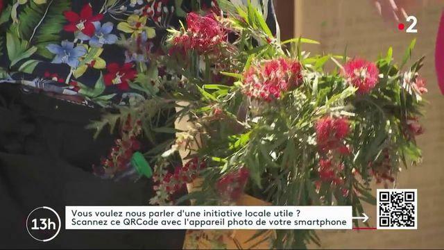 Lyon : la société protectrice des végétaux donne une seconde vie aux plantes