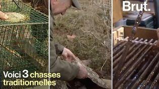 VIDEO. Chasse à la glu, à la tendelle… ces pratiques que les défenseurs des animaux dénoncent (BRUT)