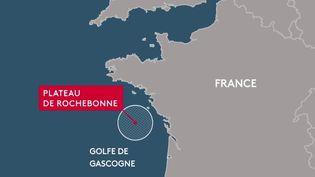 La préfecture de Nouvelle-Aquitaine a interdit la pêche au chalut pélagique sur le plateau de Rochebonne, au large de l'île de Ré (Charente-Maritime), afin d'aider plusieurs espèces marines menacées à se reconstituer. (FRANCE 2)