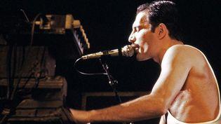 Freddie Mercury en concert au Palais Omnisports de Paris Bercy en septembre 1984  (Jean-Claude Coutausse / AFP)