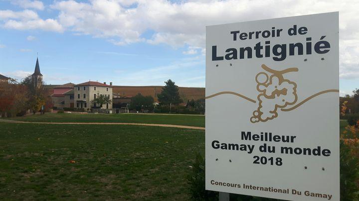 A l'entrée du village de Lantignié, dans le Beaujolais. (GUILLAUME GAVEN/RADIOFRANCE)
