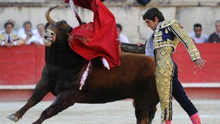 Le torero français Sebastien Castella,le 16 septembre 2012 aux arènes de Nîmes (Gard). (PASCAL GUYOT / AFP)