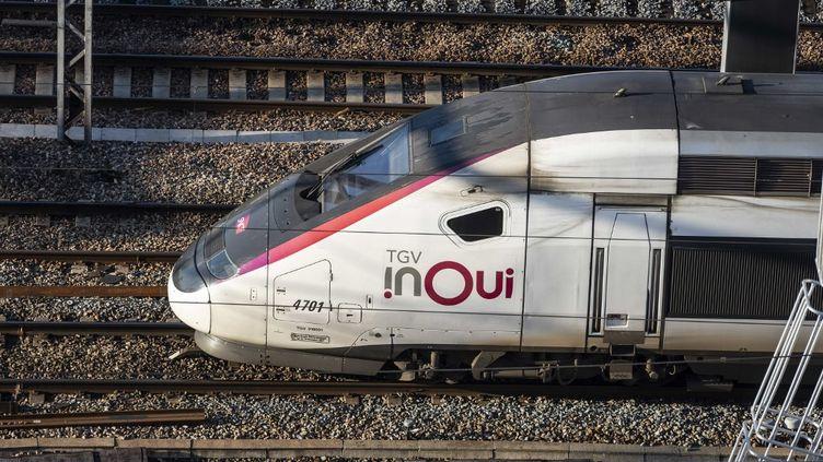 Un TGV circule, le 30 décembre 2019 à Paris. (HUGO PASSARELLO LUNA / HANS LUCAS / AFP)