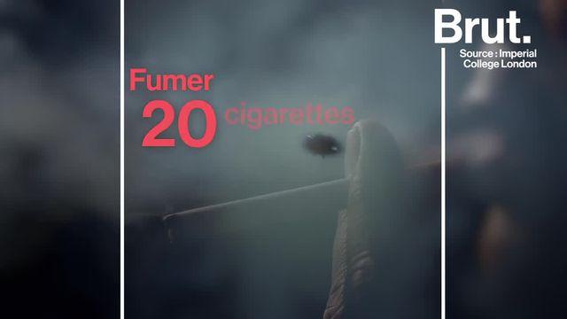 Chaque année, 6 000 milliards de cigarettes sont fabriquées. Pourtant cette production effrénée a un lourd impact environnemental.