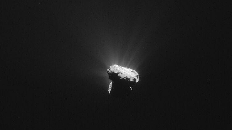 Vue de la comète Tchouri prise par la sonde Rosetta, le 13 août 2015 (ESA / AFP)