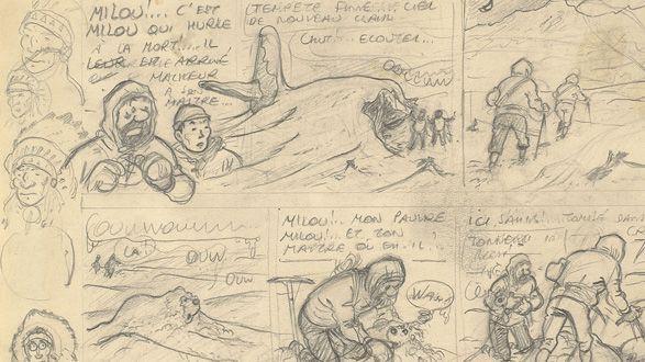 (Hergé)