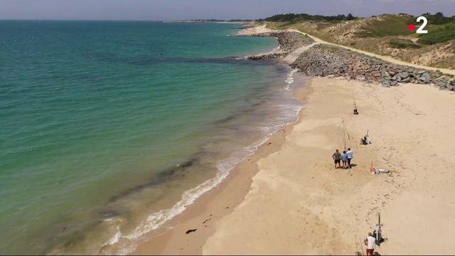 Vendée : l'île de Noirmoutier, le paradis des pêcheurs