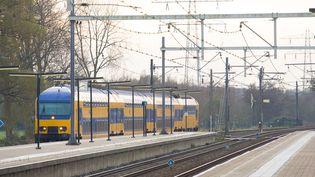 Un train de la compagnie néerlandaiseNederlandse Spoorwegen, le 13 novembre 2014. (JAAP ARRIENS / NURPHOTO / AFP)