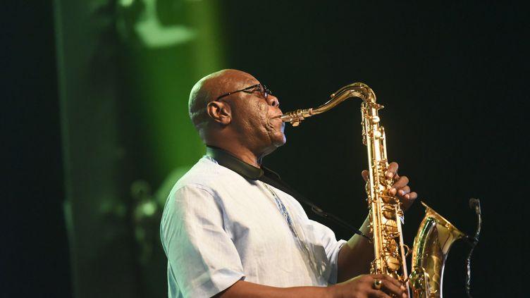 Le chanteur Manu Dibango en concert en juin 2018 à Abidjan (Côte d'Ivoire). (SIA KAMBOU / AFP)