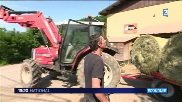 Crise du carburant : les agriculteurs redoutent la pénurie