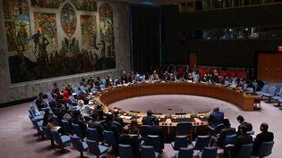 Le Conseil de sécurité de l'ONU réuni à New York (Etats-Unis), le 7 août 2015, pour l'adoption d'une résolution pourformer un groupe d'experts en charge d'identifier les responsables d'attaques chimiques au chlore en Syrie. (CEM OZDEL / ANADOLU AGENCY / AFP)