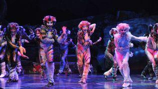 """""""Cats"""", la comédie musicale mythique s'installe à Paris au Théâtre Mogador pour 90 représentations  (DELALANDE RAYMOND/SIPA)"""
