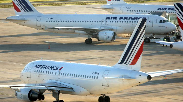 Des avions d'Air France sur le tarmac de l'aéroport de Paris-Charles-de-Gaulle,le 18 septembre 2014. (MAXPPP)