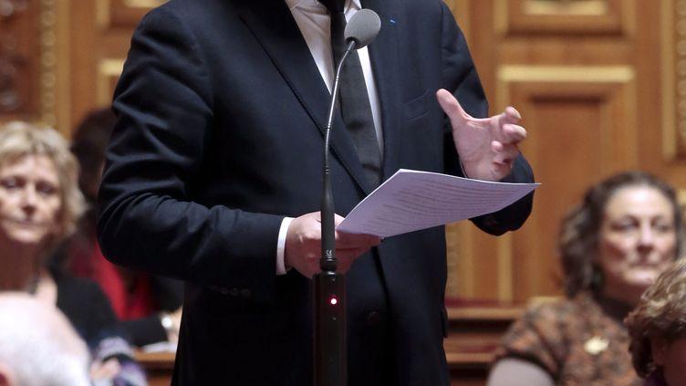 Le sénateur EELV Jean-Vincent Placé, le 20 décembre 2012 au Sénat. (JACQUES DEMARTHON / AFP)