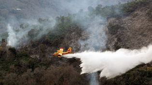 Un avion bombardier d'eau en intervention sur un incendie à Vignale, en Haute-Corse, le 16 décembre 2011. (Photo d'illustration) (PASCAL POCHARD CASABIANCA / AFP)