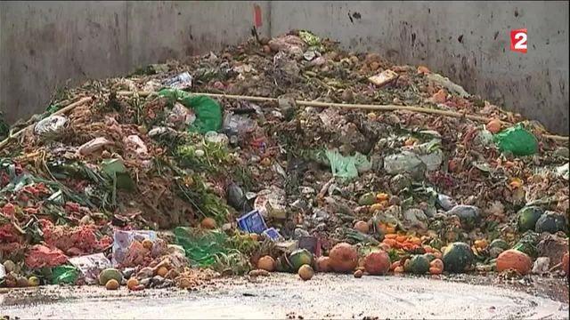Environnement : la vallée du recyclage