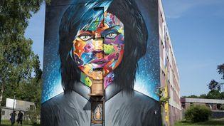 Bienvenue à street art city, à Lurcy-Lévis. (Street Art City)