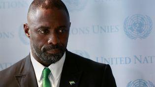 Le comédien Idris Elba lors d'une réunion de l'ONU sur Ebola, à New York, le 25 septembre 2014. (SHANNON STAPLETON / REUTERS)